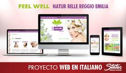 SEO, diseño web, responsive