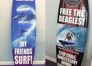 surf board wraps