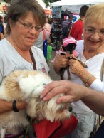 Pet Blessing 4th Friday 2015