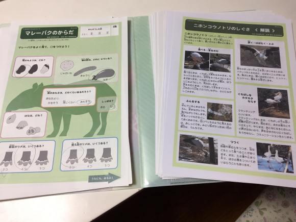 多摩動物公園 観察シート(記入後)
