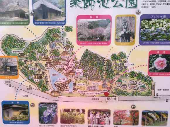 薬師池公園の地図