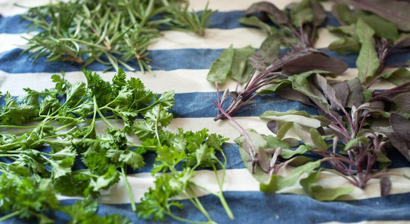 Herbs on tea towel