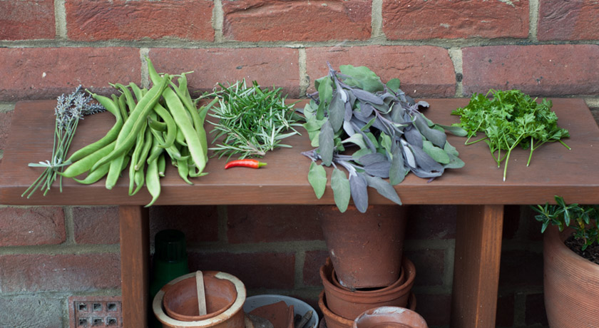 Vegetables and herbs on bench