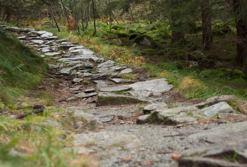 Stone steps down the mountain