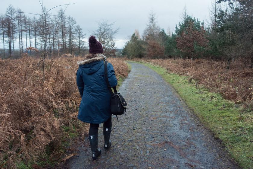 Person walking through ferns