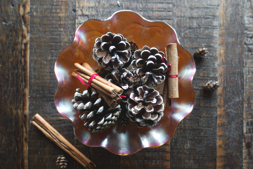 Bowl of pinecones and cinnamon