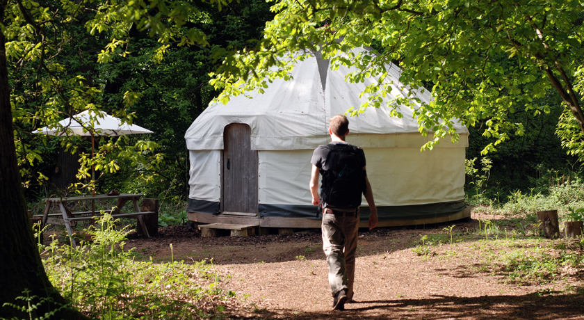 Yurt in green woodland