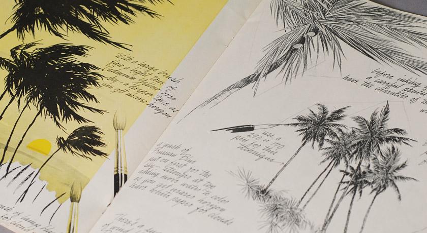 Palm tree drawings