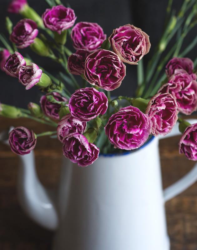 Carnations in enamelware teapot