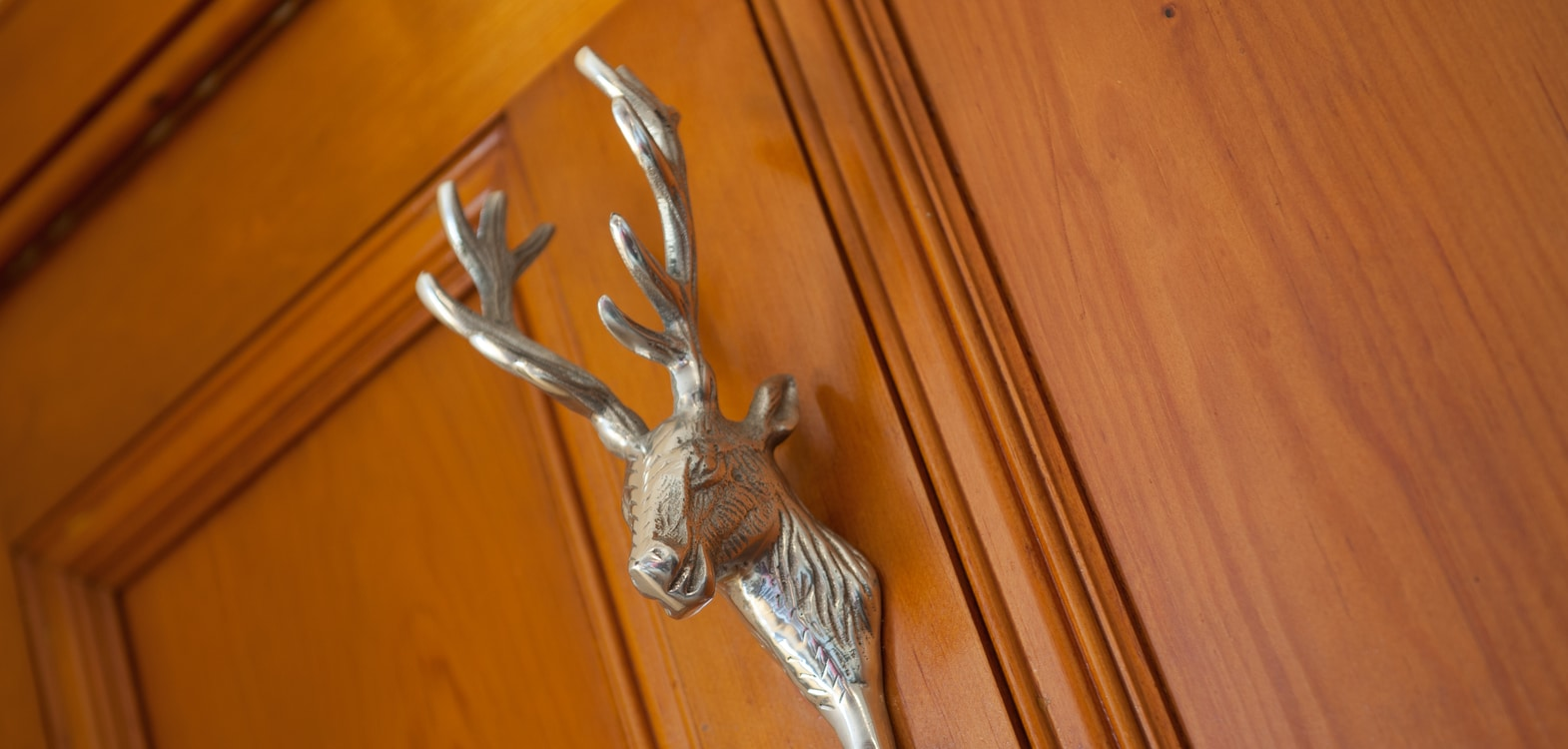 Silver stag coat hook on the back of a bedroom door at Strathallan Guest House