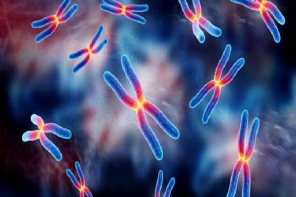 La fibromyalgie est-elle génétique? Comment savoir si j'ai la fibromyalgie?