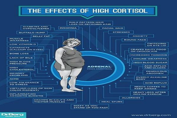 Le contrôle des niveaux de cortisol pourrait-il aider à soulager les symptômes de la fibromyalgie?