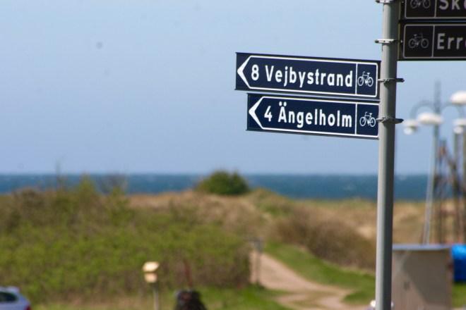 Underbar cykelväg mellan Skälderviken och Vejbystrand