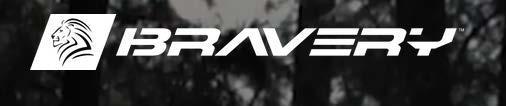 bravery2