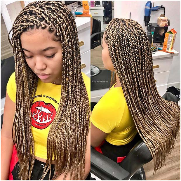 23 Cool Blonde Box Braids Hairstyles to Try