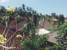 View from Wijaya Home Stay in Ubud, travel to Indonesia