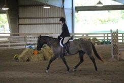 Trot extension
