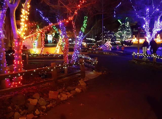 best christmas light displays in arizona