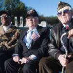 3 senior vets sitting