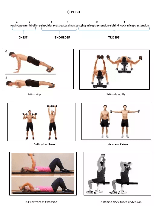 M-F Workout Routine- 5 Day Body Part Split Workout