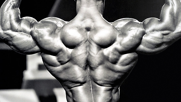 back exercises to build massive back