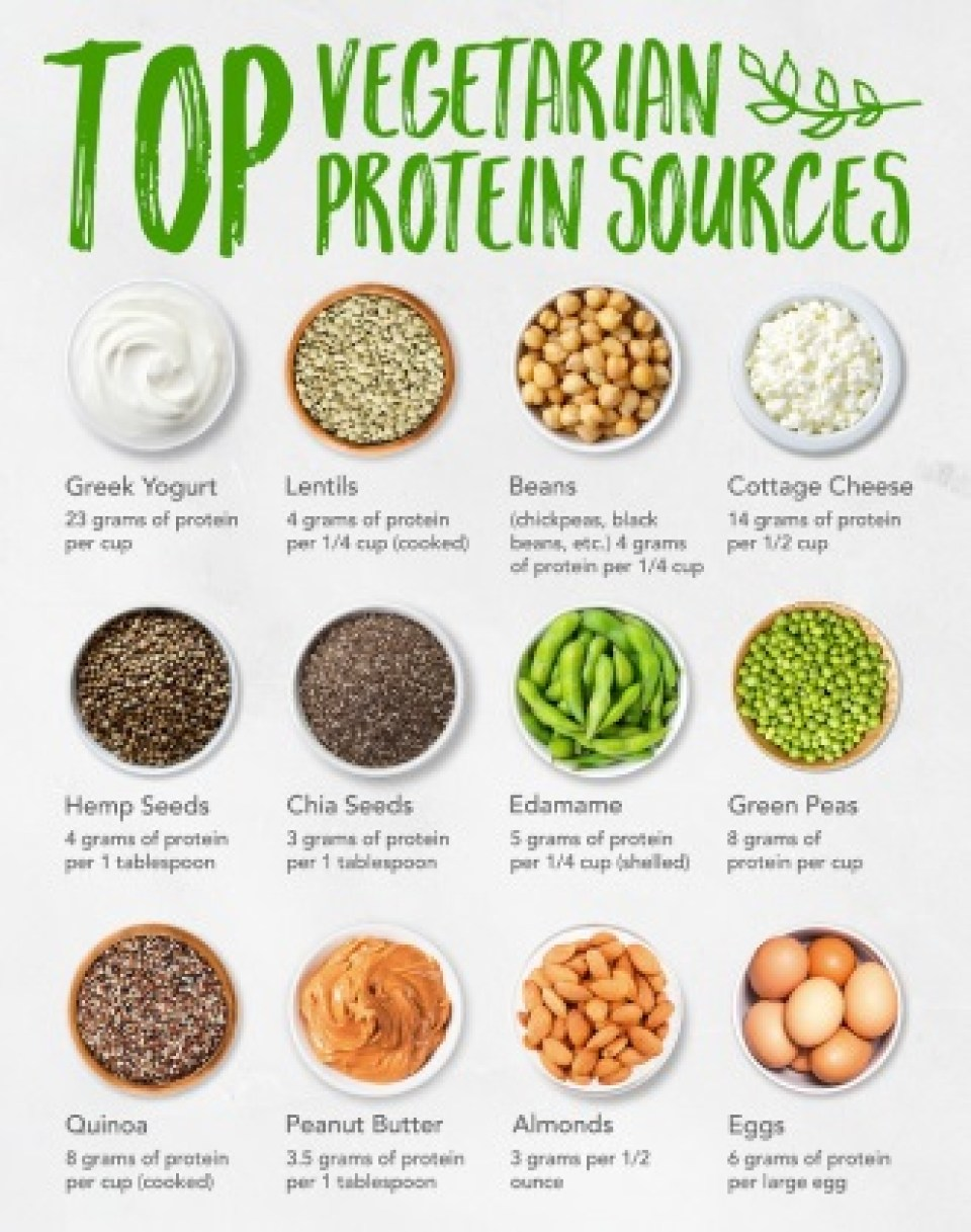 vegetarian diet high protein