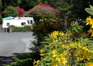 Early summer colours are enjoyed by guests at Skelwith Fold