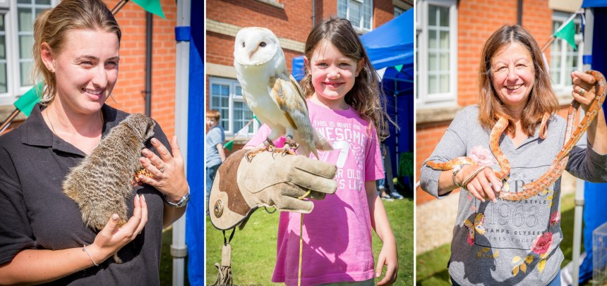 Hands-on help for animals: residents and guests at The Elms' wildlife day get a real feel for conservation