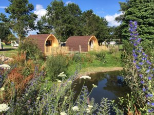 Picturesque views of the park's wildlife pond are enjoyed by guests