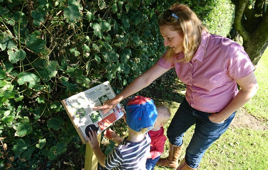 Mini-adventure: praised by David Bellamy, the park's wildlife trail leads youngsters along the path of discovery