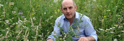 Henry Wild (above) says the park's new wildflower wilderness will be providing a foraging feast for the bees
