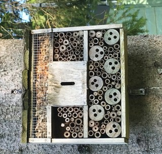 Logging on: drilled logs provide homes for solitary bees