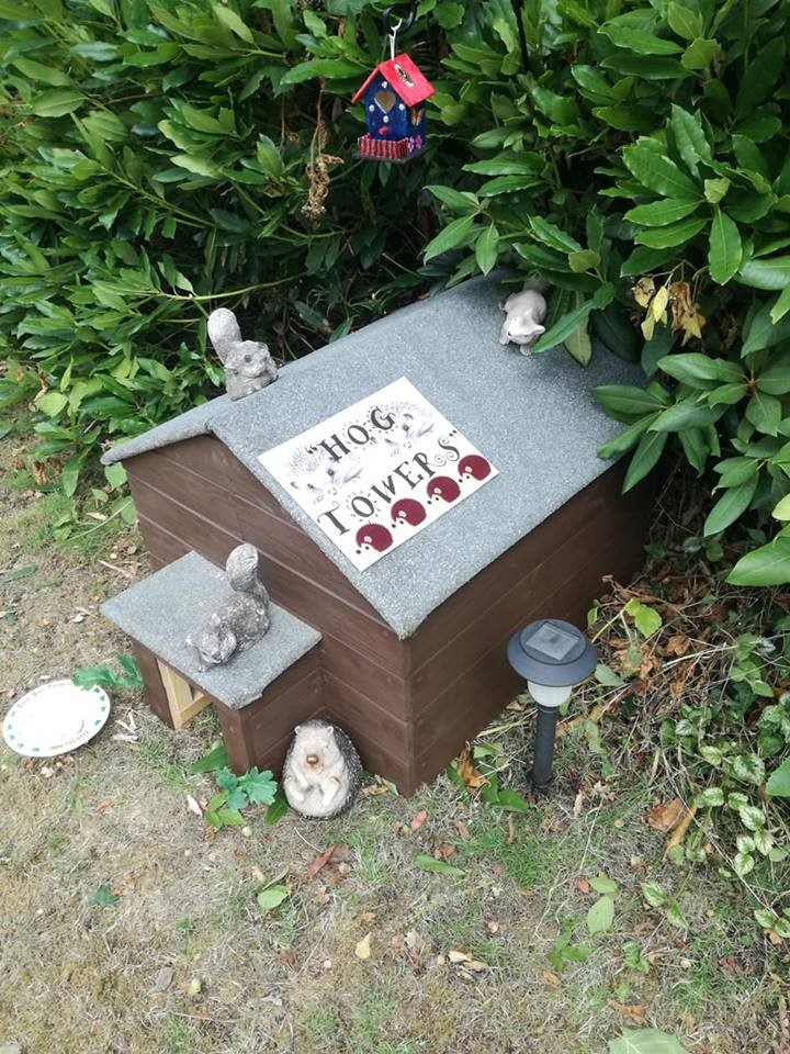 The park's hedgehog hotel inspires both adults and children alike