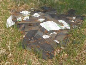 At the Richard St. Barbe Baker Afforestation Area, Saskatoon, SK One of the many piles of roofing shingles Before the 2016 Community Clean Up