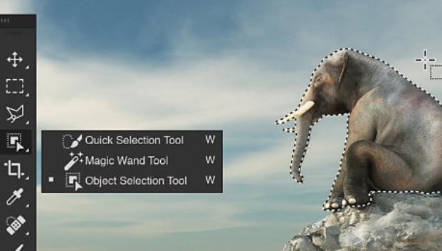 Công cụ Crop Tool trong Photoshop