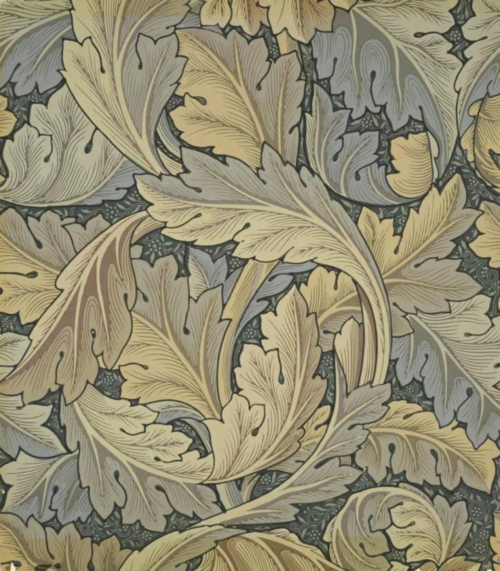 1.-acanthus.2006AU5054_2500.jpg