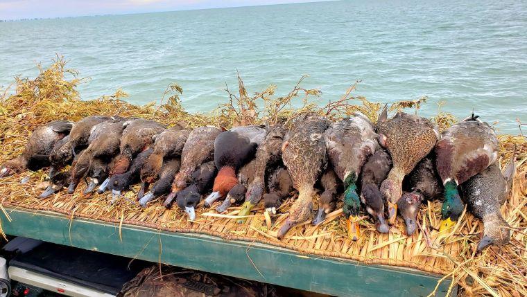 122988820 383676546149747 4102076437187200787 n 2 St. Clair Duck Hunts