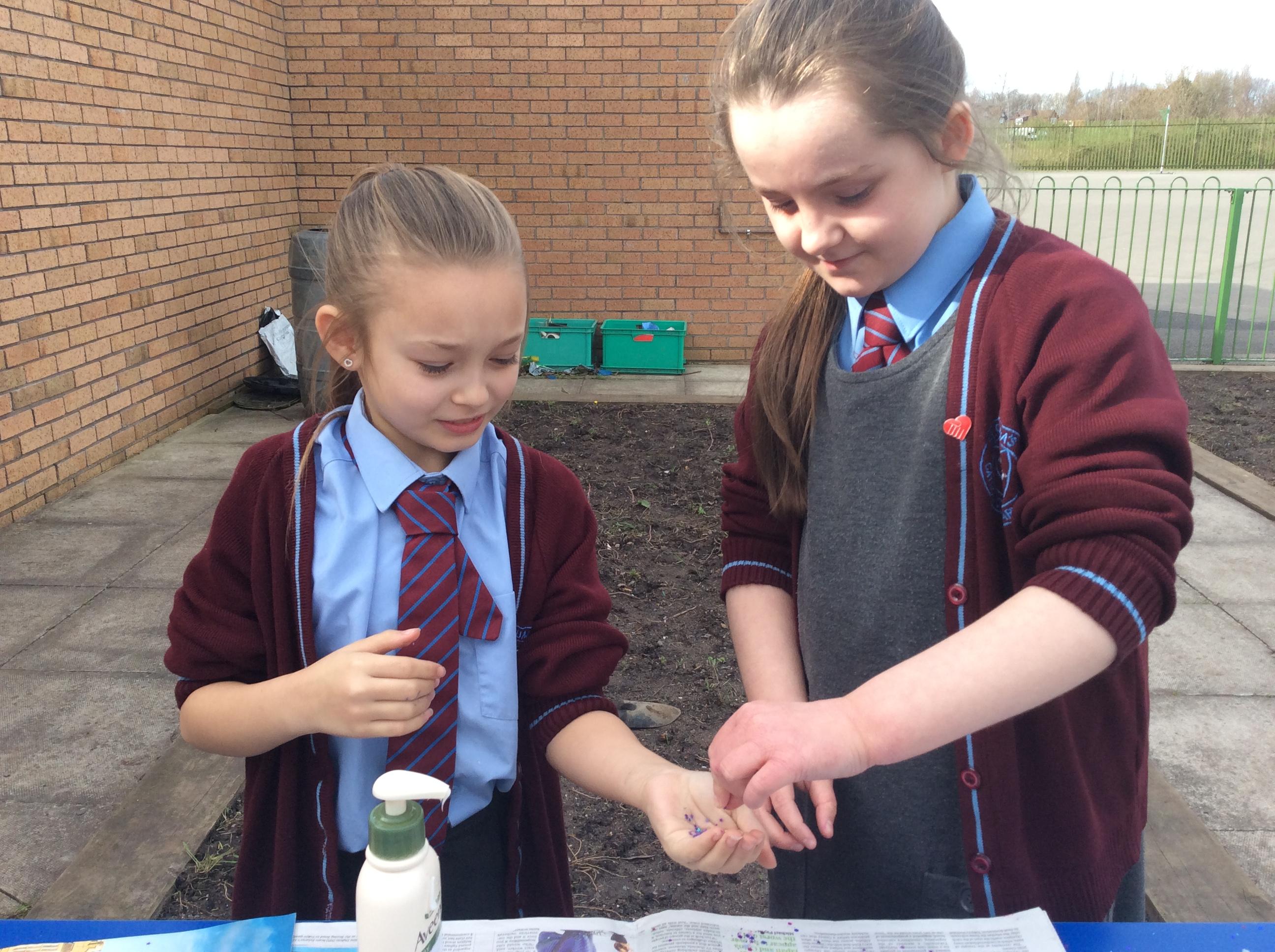 Hand Washing Experiment Stcolumbasyear5