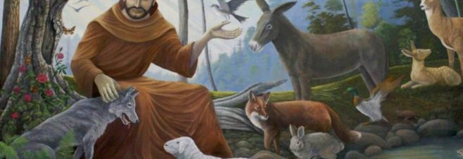 The Blessing of Animals 2019