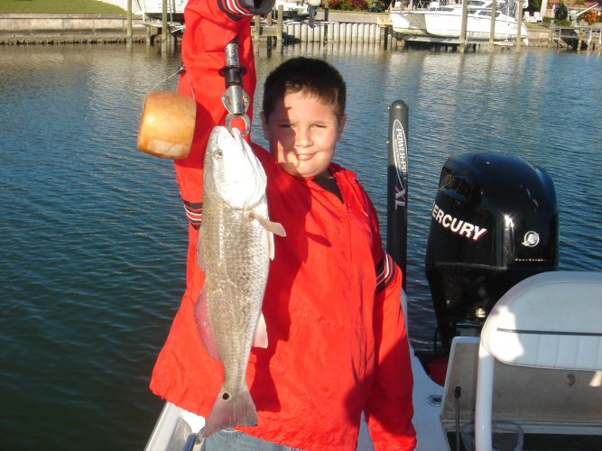 a tampa fisherman with redfish