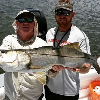 Large Snook caught in Tampa Bay