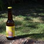 Mikkeller Drink'in the Sun bottle