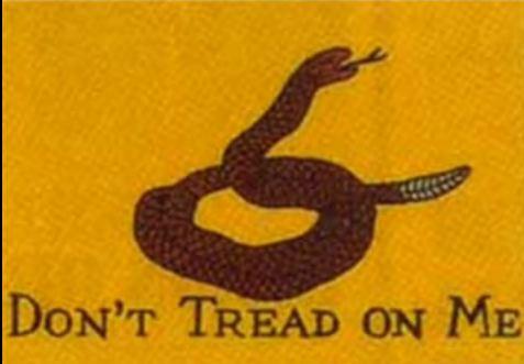 Don't Tread on Me: Happy Birthday America!