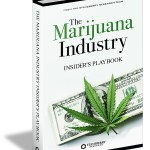 The Marijuana Industry Insider's Playbook