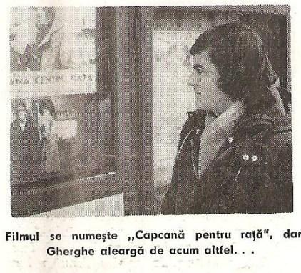 8. - Gherghe
