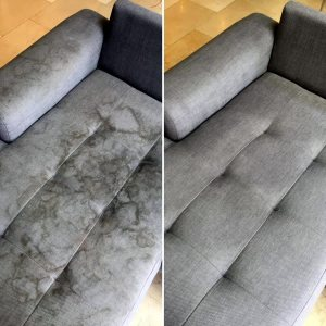 Steam Masters steam upholstery cleaning in SW Florida