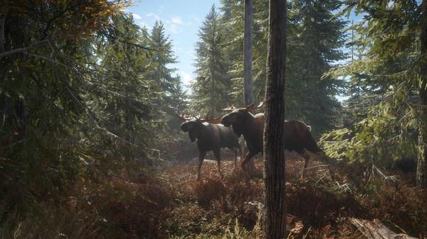 theHunter: Call of the Wild™ Screenshot