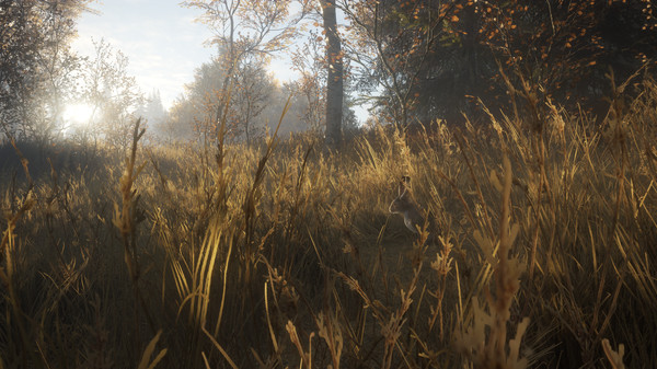 theHunter™: Call of the Wild - New Species 2018