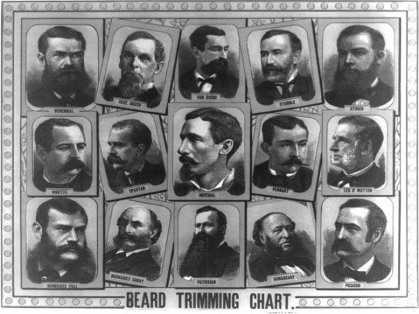Beard chart