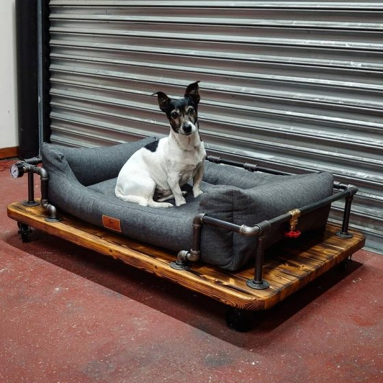 Industrial Steampunk Style Dog Bed. Created by The Little Vintage Lamp.